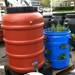 Rain Barrels and Strawberry Planter