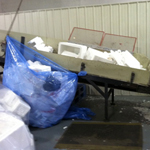 foam in bags and on conveyer belt